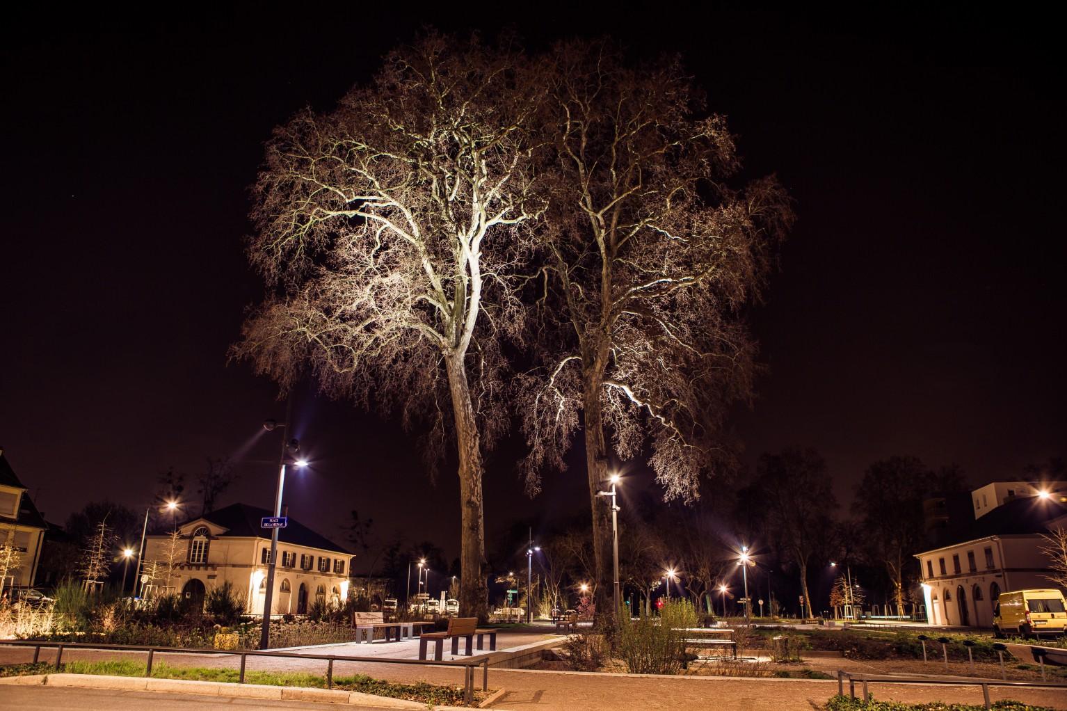 illuminations place Strasbourg Groupe Tellos